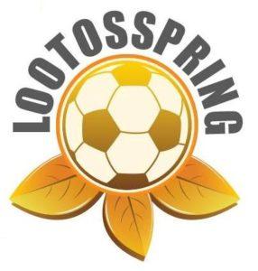 Springi logo_2016